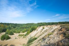 Sandhills and pine forest under blue sky Stock Image