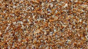 Sandhintergrund auf dem Strand Stockbilder