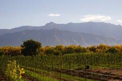 Sandia-Berge lizenzfreies stockbild