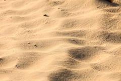 Sandig bakgrund för abstrakt strand för sandtexturmodell royaltyfri bild