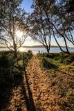Sandig bana som leder till solen som stiger över stranden arkivbilder