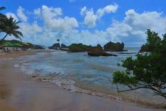 Sandig strand av Tambaba i tillståndet av Paraiba Brasilien Arkivbild
