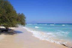 Sandig strand för exotisk vit korall på Gili Islands, Indonesien Royaltyfria Foton