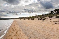 Sandig strand nära Walpole Arkivfoton