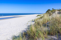 Sandig strand på Helhalvön, baltiskt hav, Polen Arkivbild