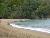 Sandig strand Tobago Royaltyfri Fotografi