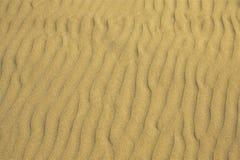 Sandig strandbakgrund Arkivfoto