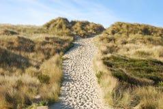 Sandig Trail Fotografering för Bildbyråer