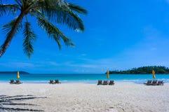 Sandig tropisk strand med solstolar Arkivbild