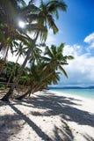 sandig tropisk white för strand Royaltyfri Fotografi