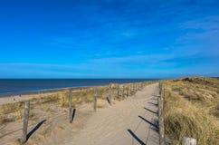 Sandig väg överst av dyerna och att leda längs stranden royaltyfri fotografi