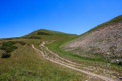 Sandig vandringsled till överkanten av berget som täckas med alpina ängar Royaltyfri Foto