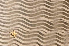 Sandig waveesbakgrund med sjöstjärnan Royaltyfri Fotografi