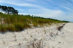 Sandiga dyn Arkivbilder