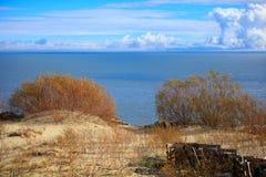 Sandiga dyn av den baltiska kusten Royaltyfri Fotografi
