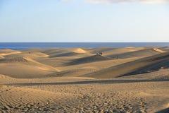 Sandiga dyn i den ber?mda naturliga Maspalomas stranden canaria gran spain royaltyfria bilder