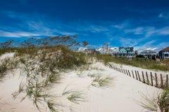 Sandiga dyn med gemenskap för havsgräs- och strandhus i bakgrund royaltyfria foton