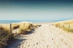 Sandiga dyn på havskusten royaltyfri bild