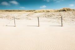 Sandiga dyn på kusten royaltyfria foton