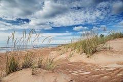 Sandiga dyn på kusten av Ladoga, Karelia, Ryssland Royaltyfri Fotografi