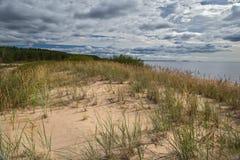 Sandiga dyn på kusten av Ladoga, Karelia, Ryssland Royaltyfria Foton