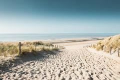 Sandiga dyn på kusten av Nordsjön royaltyfri fotografi