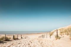 Sandiga dyn på kusten av Nordsjön royaltyfri bild
