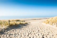Sandiga dyn på kusten, Nederländerna royaltyfria bilder