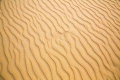 Sandiga vågor, strand på den Ceylon kusten Royaltyfri Foto