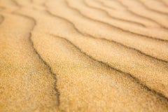 Sandiga vågor, strand på den Ceylon kusten Arkivbild