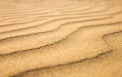 Sandiga vågor, strand på den Ceylon kusten Royaltyfri Bild
