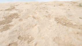 Sandige Berge und Gras des Sommers stock footage