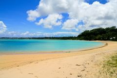 Sandiger Strand der exotischen Ferien auf Türkiswasserbucht mit tropischen Küstenbäumen stockfotografie