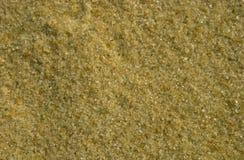 Sandkorn Arkivbilder