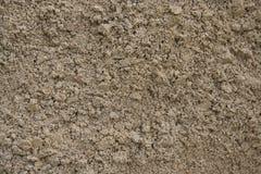 Sandkorn lizenzfreie stockfotos