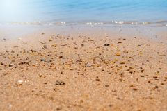 Sandkorn och Little Rockar på ett soligt strandslut upp royaltyfri foto