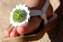 sandle καλοκαίρι Στοκ Εικόνες