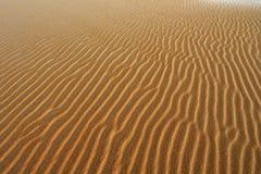 Sandmodell, Silver Lake sanddyn Royaltyfri Bild