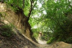 Sandomierz poland Loessklyfta av St Jadwiga Royaltyfri Fotografi