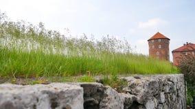 Sandomierz torn, Wawel slott, Polen Arkivfoto