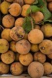 Sandoricum koetjape or Santol fruit in Thailand market Royalty Free Stock Photo