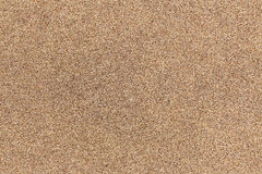 Sandpaper Background Royalty Free Stock Photo