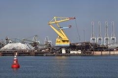 Sandpappra bransch i hamnen av rotterdam netherland Royaltyfria Bilder