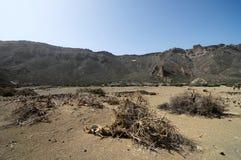 Sandpappra och vaggar öknen arkivbild