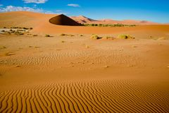 Sandpappra riffles i öken och dyn i den Namib öknen, Namibia Orange dyn i Sossusvlei, Namibia fotografering för bildbyråer