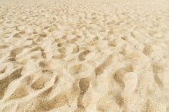 Sandpappra tätt upp på stranden som bakgrund Royaltyfri Foto