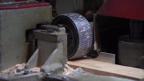 Sandpappra trä som bearbetar trä som bearbetar bräden stock video