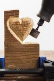 Sandpappra wood vit Arkivfoto