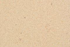 Sandpapprar bakgrund Royaltyfri Fotografi