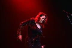 Sandra Ann Lauer Concert Royaltyfri Fotografi